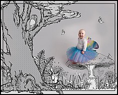 Fairy Woodland - Storybook series