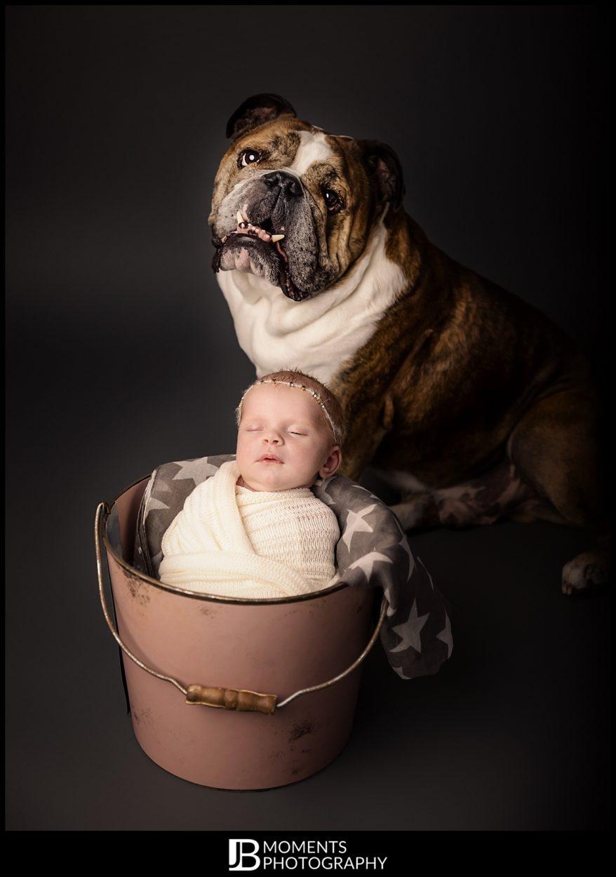 Newborn Photographer - JB Moments Photography